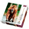 Orangután 1000 db-os puzzle