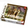 Oroszlánok 1500 db-os puzzle -Trefl